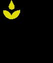 Attn Grace Logo
