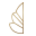 Mindscopic.com Logo